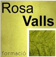 Aula Rosa Valls Formació